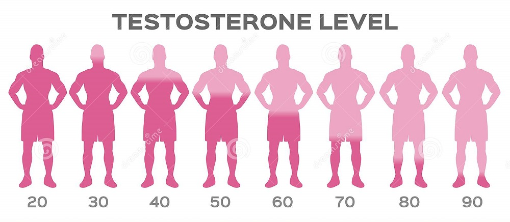 testosterone hormoe