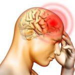 Xem ngay những cây thuốc giúp tăng tuần hoàn não tốt nhất